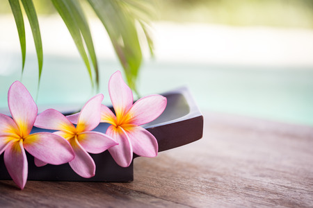 Foto per spa and wellness background,  tropical environment with frangipani flower - Immagine Royalty Free