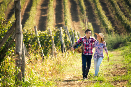 Photo for Couple of winegrowers walking through the huge vineyard - Royalty Free Image