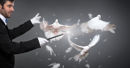 Photo for magician performs the trick with white a pigeon - Royalty Free Image