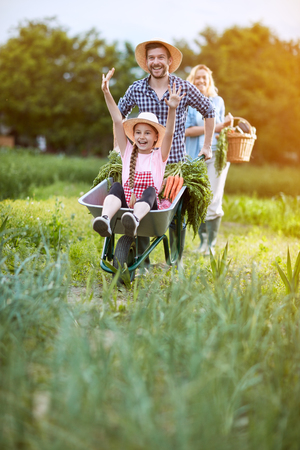 Foto de Cheerful girl enjoying in wheelbarrow - Imagen libre de derechos