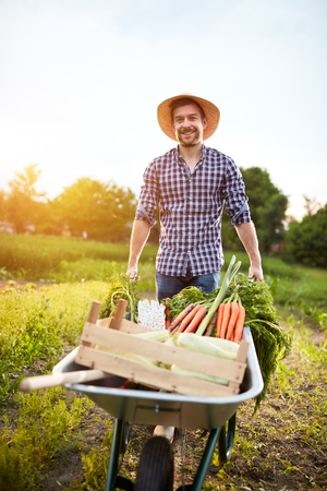 Foto für Farmer in garden with vegetables in wheelbarrow - Lizenzfreies Bild