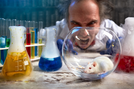 Foto de  Mad scientist yelling on lab mouse, angry about a failed experiment - Imagen libre de derechos