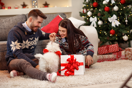 Photo pour Cheerful couple having Christmas celebration at home - image libre de droit