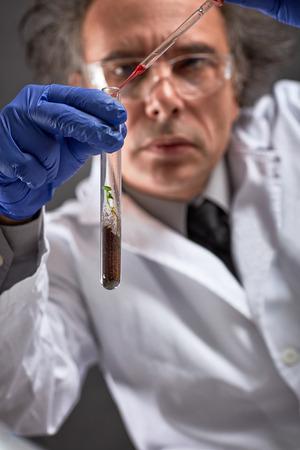 Foto de chemist doing genetically modified experiment on young plant - Imagen libre de derechos