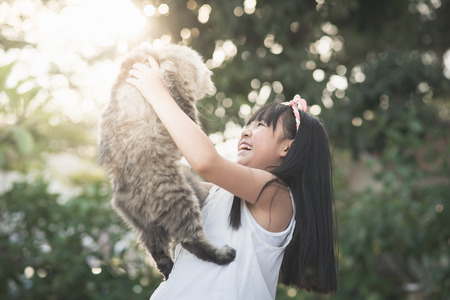 Beautiful Asian girl holding Lovely persian cat with sunshine in the park,vintage filter