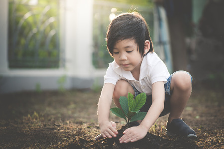 Foto de Cute Asian child planting young tree on the black soil - Imagen libre de derechos