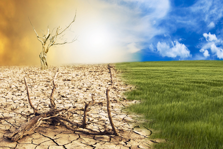 Photo for conceptual scene: metamorphosis of our planet, transition from a green environment to the hostile and arid climate due to climate change - Royalty Free Image