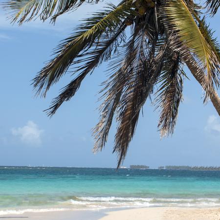 Foto de summer beach on the caribbean ocean, panamenian paradise - Imagen libre de derechos