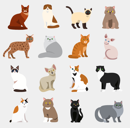 Ilustración de Cat breeds cute pet animal set vector illustration animals icons cartoon different cats - Imagen libre de derechos