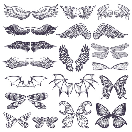 Illustration for illustration of wings for tattoo set isolated on white background - Royalty Free Image