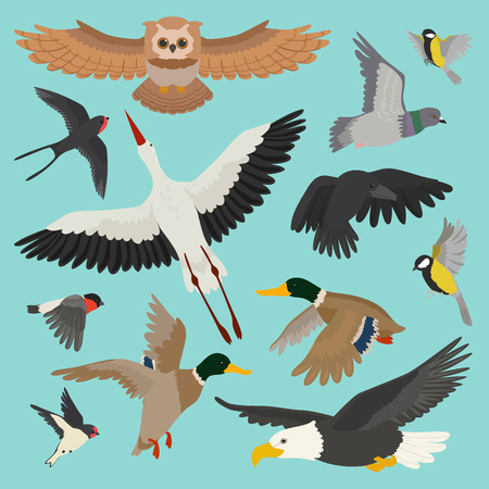Illustration pour Birds vector isolated on background - image libre de droit