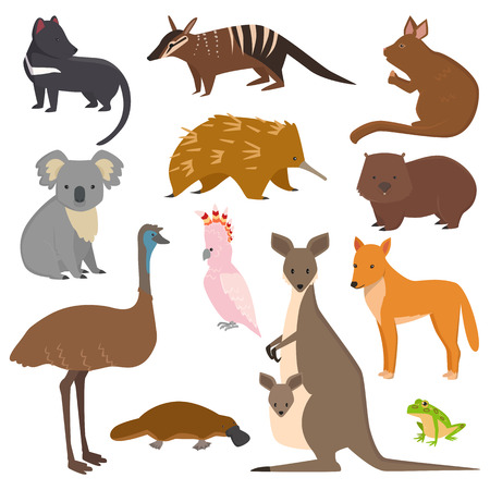 Illustration pour Australian wild animals vector set - image libre de droit