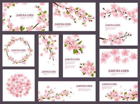 Ilustración de Sakura vector blossom cherry greeting cards with spring pink blooming flowers illustration japanese set of wedding invitation flowering template decoration isolated on white background. - Imagen libre de derechos