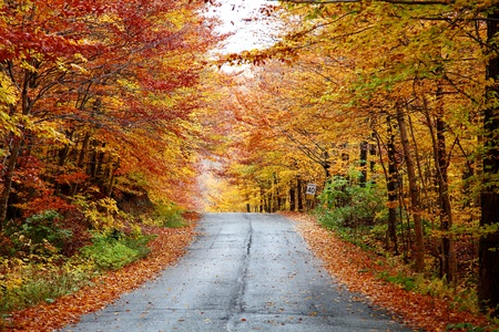 Photo pour Rainy autumn afternoon on a country road located in Quebec, Canada. - image libre de droit