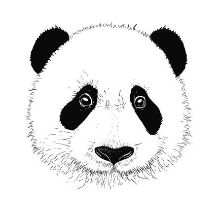 Baby panda face icon. Baby panda. Asian bear. Cute panda. Positive panda. Isolated panda head on white background. Panda head silhouette