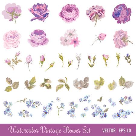 Illustration pour Vintage Flower Set - Watercolor Style - in vector - image libre de droit