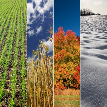 Four seasons  Spring, summer, autumn and winter  Vertical banners
