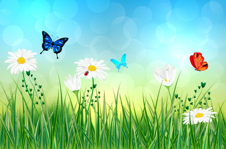 Illustration pour Spring or summer abstract meadow with daisy flowers and butterflies - vector illustration - image libre de droit