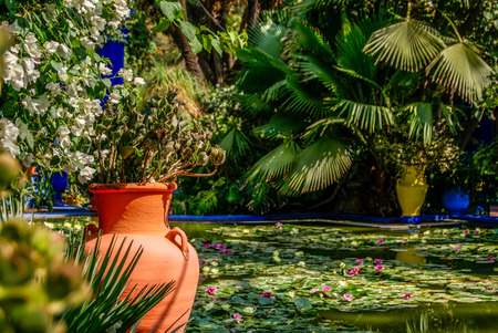 Photo pour Garden, Museum of Islamic Art, painted in Majorelle Blue, at the Majorelle Garden in Marrakesh. - image libre de droit