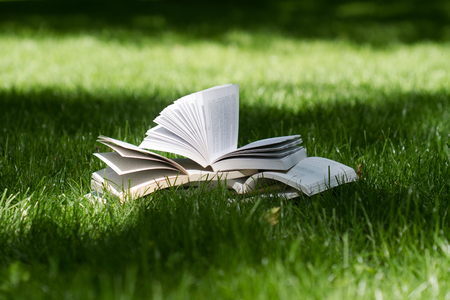 Photo pour horizontal side view of many open books on top of each other standing on green grass in park in the shadows of the trees - image libre de droit