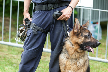 Foto de Police dog. Policeman with a german shepherd on duty. - Imagen libre de derechos