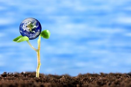 Photo pour Eco Earth - image libre de droit