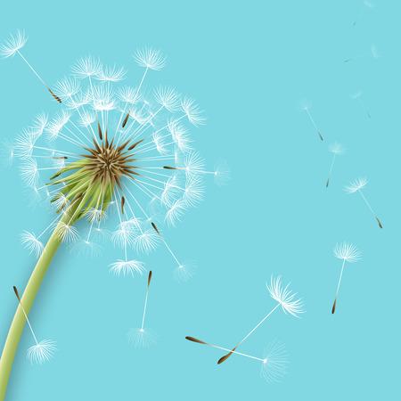 Ilustración de White dandelion with pollens isolated vector illustration - Imagen libre de derechos