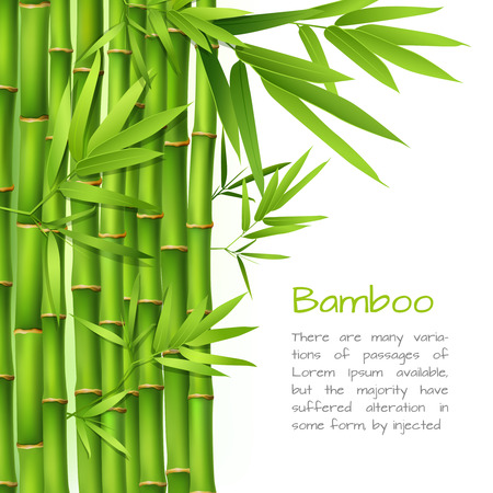Illustration pour Realistic green bamboo plant grass tree oriental japanese background vector illustration - image libre de droit