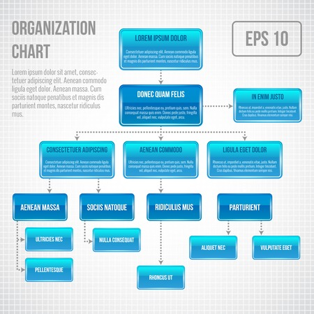 Foto per Organizational chart infographic business structure concept  flowchart vector illustration - Immagine Royalty Free