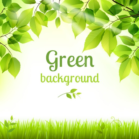 Ilustración de Natural green fresh spring leaves and grass botanic foliage decorative background poster print vector illustration - Imagen libre de derechos