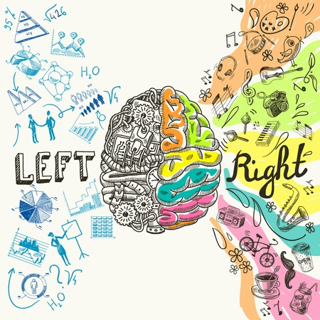 Illustration pour Brain left analytical and right creative hemispheres sketch concept vector illustration - image libre de droit