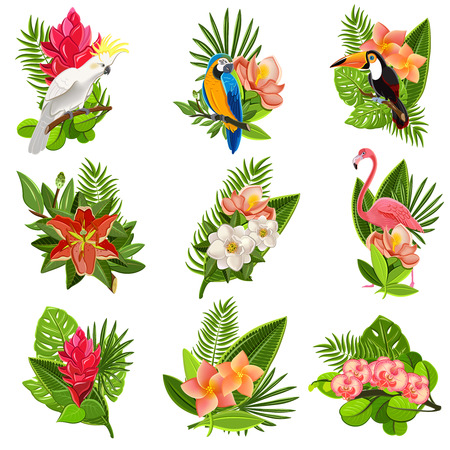 Illustration pour Exotic tropical flowers and birds icons collection with beautiful opulent green foliage arrangements abstract isolated vector illustration - image libre de droit