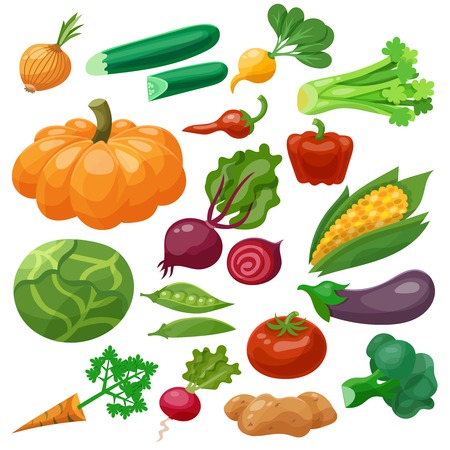 Ilustración de Vegetables icons set with cauliflower maize cabbage radish isolated vector illustration - Imagen libre de derechos