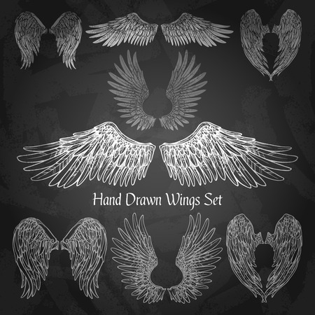 Illustration for Hand drawn wings set on chalk board isolated vector illustration - Royalty Free Image