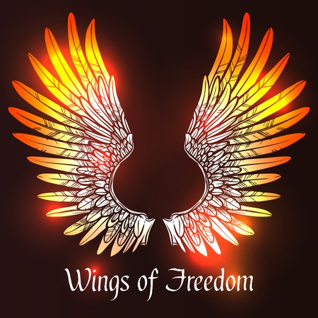 Illustration for Sketch angel or bird wings on dark background with wings of freedom text vector illustration - Royalty Free Image