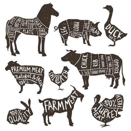 Illustration for Farm animals and poultry silhouette icons set with typographics isolated vector illustration - Royalty Free Image