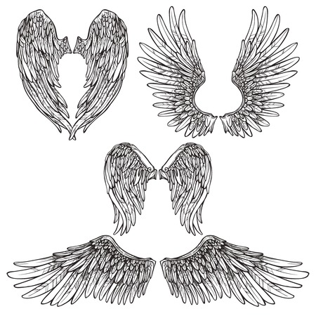 Illustration for Angel or bird wings abstract sketch set isolated vector illustration - Royalty Free Image