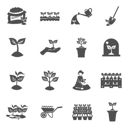 Illustration pour Plant seedling watering and digging equipment black flat icons set isolated vector illustration - image libre de droit