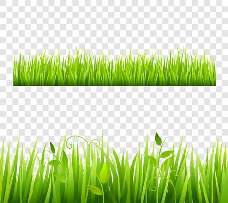 Illustration pour Green and bright grass border tileable transparent with plants flat isolated  vector illustration - image libre de droit