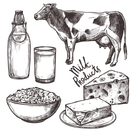 Illustration pour Sketch milk products set with cow and cheese isolated vector illustration - image libre de droit