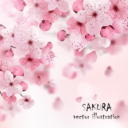Ilustración de Beautiful print with blossoming dark and light pink sakura flowers and title vector illustration - Imagen libre de derechos