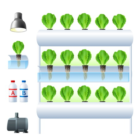Illustration pour Hydroponics system icon set with equipment and necessary tools for plants cultivation vector illustration - image libre de droit