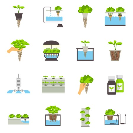 Illustration for Set of color flat icons depicting elements of hydroponic system vector illustration - Royalty Free Image