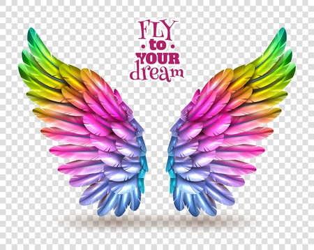 Illustration for Pair of colorful bird wings set isolated on transparent background with shadow flat vector illustration - Royalty Free Image