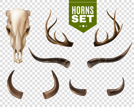 Ilustración de Realistic set of cow skull and horns of different shape isolated on transparent background vector illustration - Imagen libre de derechos