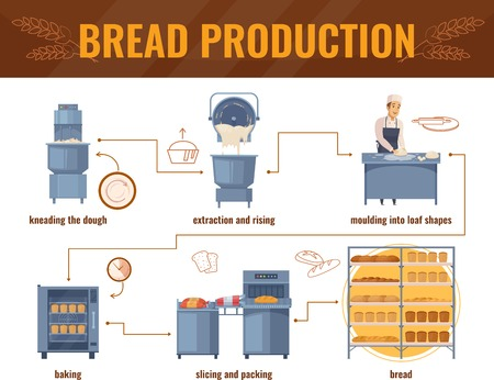 Illustration pour Bread production cartoon infographics with processing line from kneading dough to packing of baked products vector illustration - image libre de droit