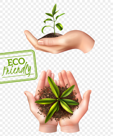 Illustration pour Ecology concept including lettering eco friendly, realistic female hands with sprout isolated on transparent background vector illustration - image libre de droit