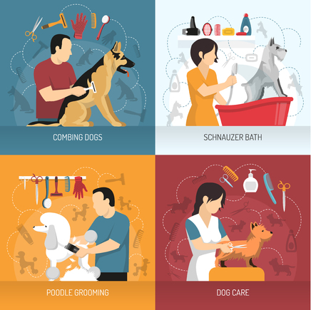 Illustration pour Grooming service design concept with view of hairdresser combing and bathing dogs of different breed with icons vector illustration. - image libre de droit