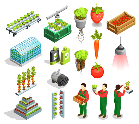 Ilustración de Hydroponic and aeroponic isometric icons set of fresh fruits and vegetables harvest orangery fertilizer symbols isolated vector illustration  - Imagen libre de derechos