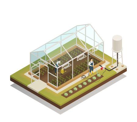 Ilustración de Greenhouse cable-supported irrigation facilities isometric composition with gardeners watering plants with hose and waterpot vector illustration - Imagen libre de derechos